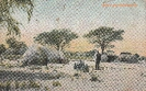 NR 7022 HERERODORF OSANNA