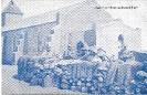 NR. 8186 SCHÜTZENSTELLUNG
